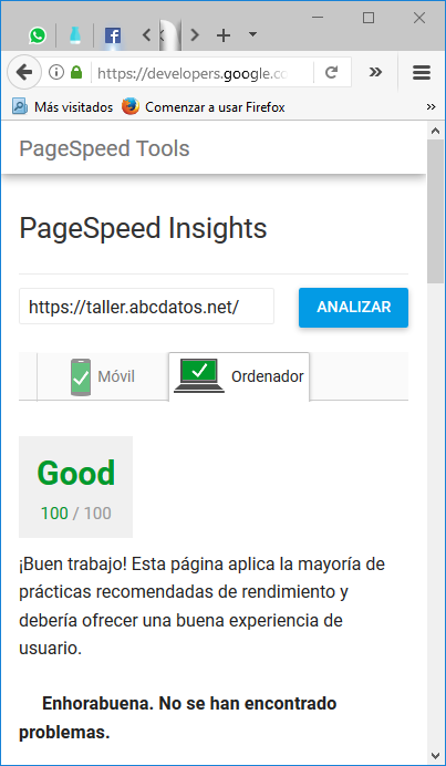 Indicador de PageSpeed Insight ordenador marcando el 100%